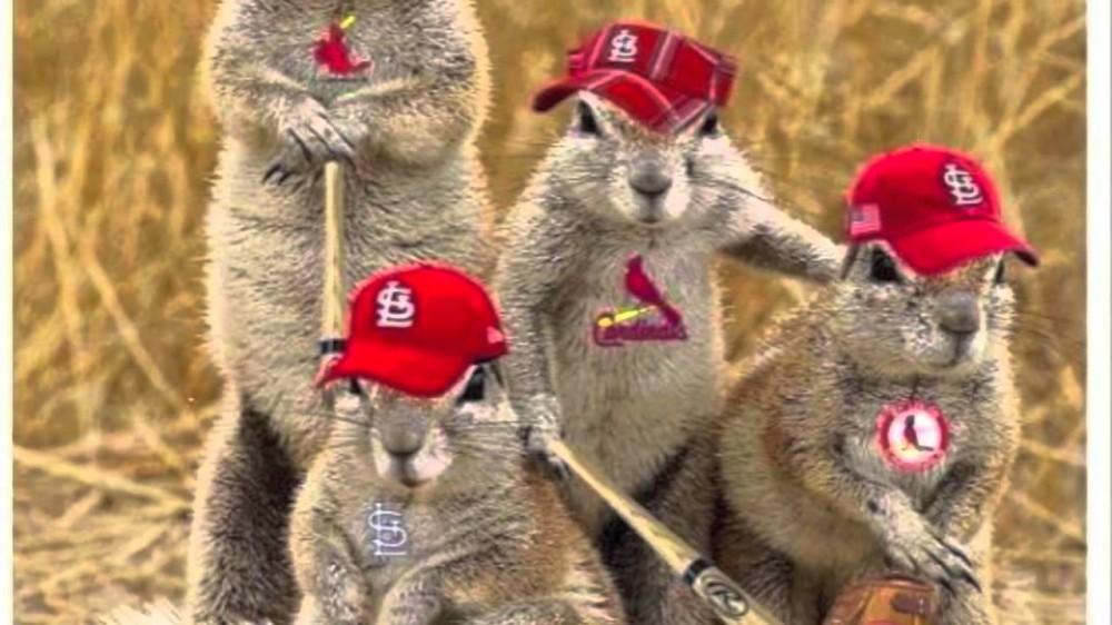 Cardinal Nation Strong ( 2013 Cardinals World Series Song)
