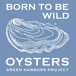 20131127123511-born_to_be_wild_green_harbors_project_copy